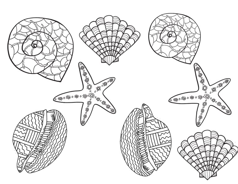 Free Sea Shell Coloring Pages