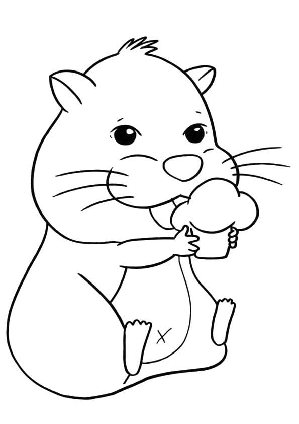 Hamster Coloring Sheet