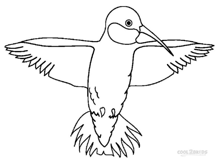 Hummingbird Coloring Page to Printable