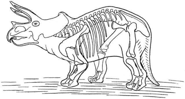 Iguanodon Coloring Page