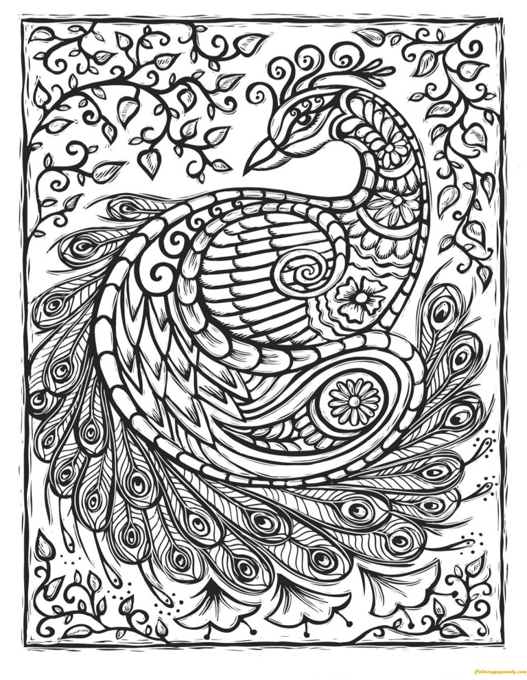 Pictures Of Peacocks To Color