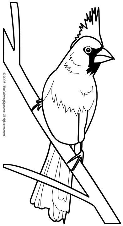 Red Bird Coloring Page