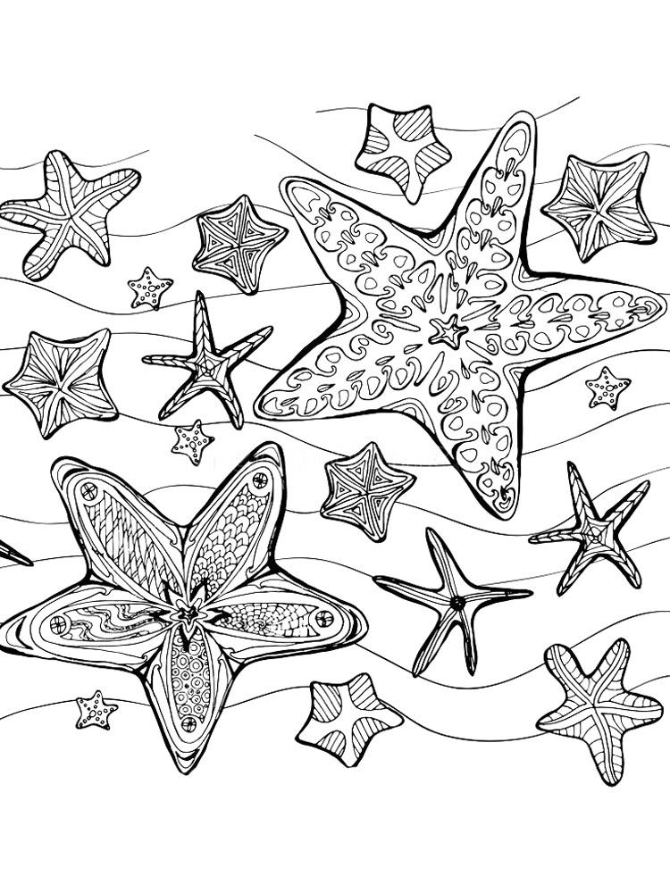 Starfish Color Sheet