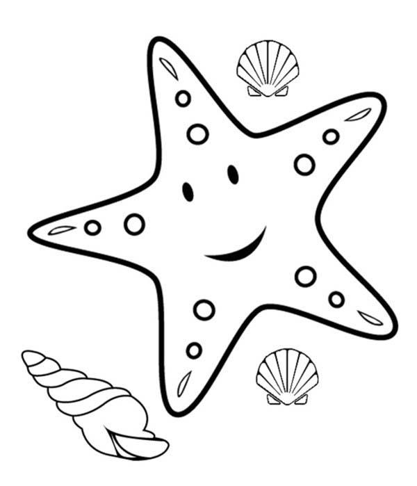Starfish Colouring Sheet