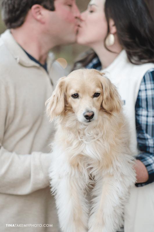 Swift-Creek-Engagement-Photography-Cute-Dog-Pets-Sneak