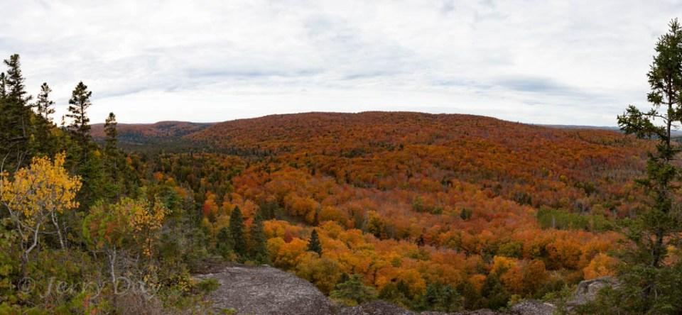 Lutsen-Mtn-Fall-Color-Pano-2