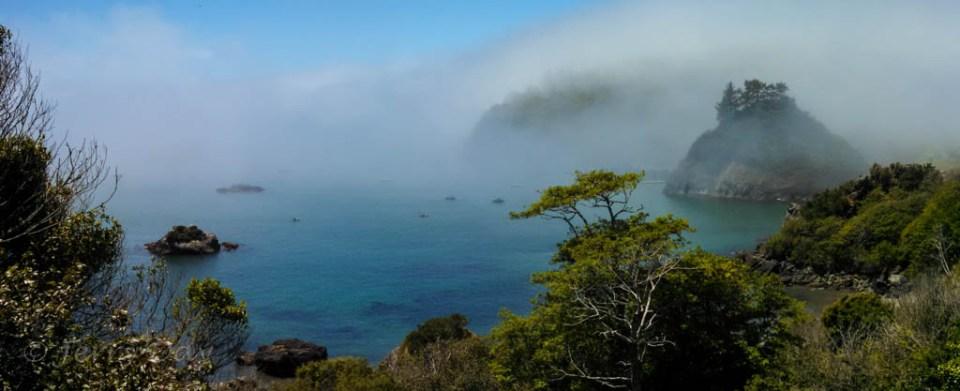 Foggy Day on Trinidad Bay