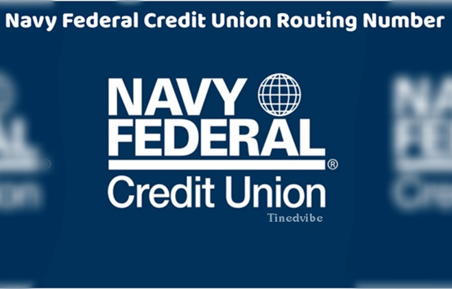 Navy Fed Phone Number