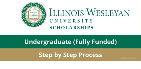 Illinois Wesleyan University International Students Scholarships