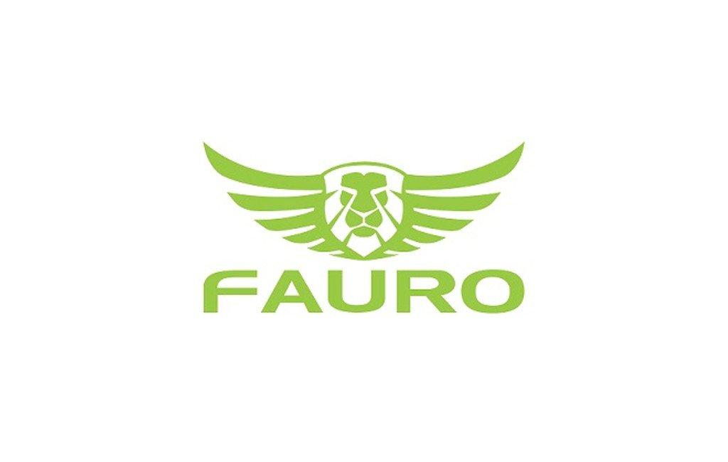 Logo de Fauro Motor Company