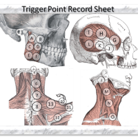 Trigger Point Record Sheet-Icon