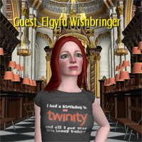 Elgyfu in St Paul's Cathedral, Twinity