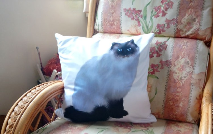 Tin Teddy Gifts Mr Biggles Cat Cushion Cover (Pillow case)
