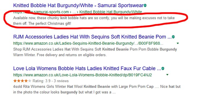 Google Search Snippet Example