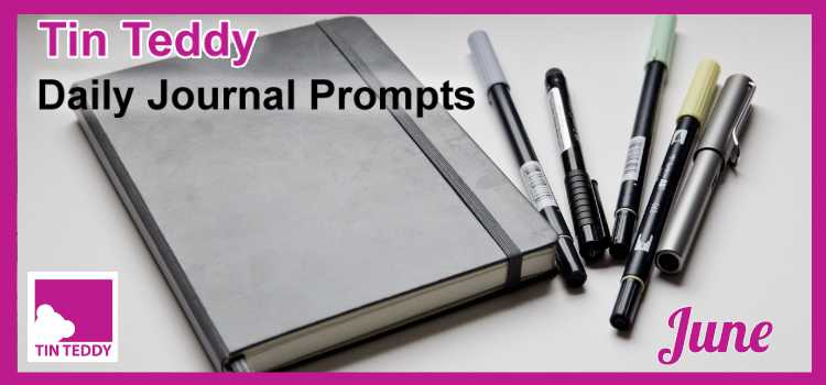 Tin Teddy Daily Journal Prompts - June