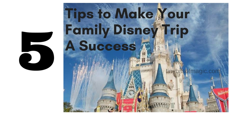 5 Tips to Make Your Family Disney Trip a Success