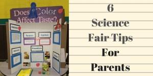 winning science fair tips