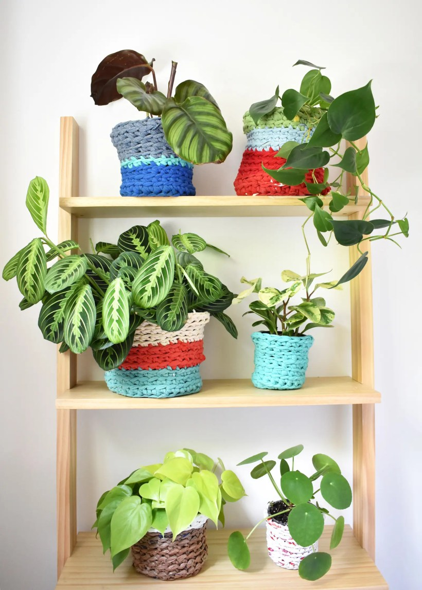 Three light wooden shelves with two houseplants on each shelf. Each plant has a colorful crochet plant pot cover on it. The plant pot covers are made with t-shirt yarn or plastic bag yarn.