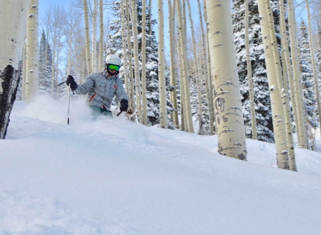 Skier skiing powder through trees at Powderhorn Resort in Mesa, Colorado