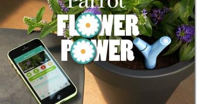 parrot flower power 03