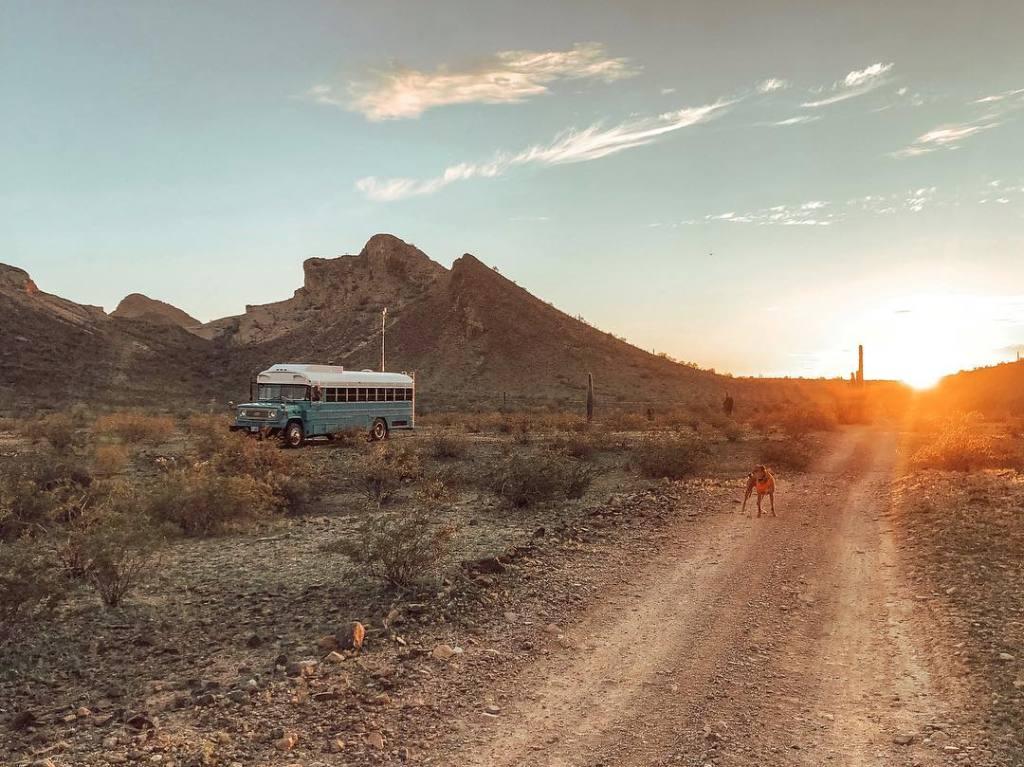 Wild Drive Skoolie in the desert