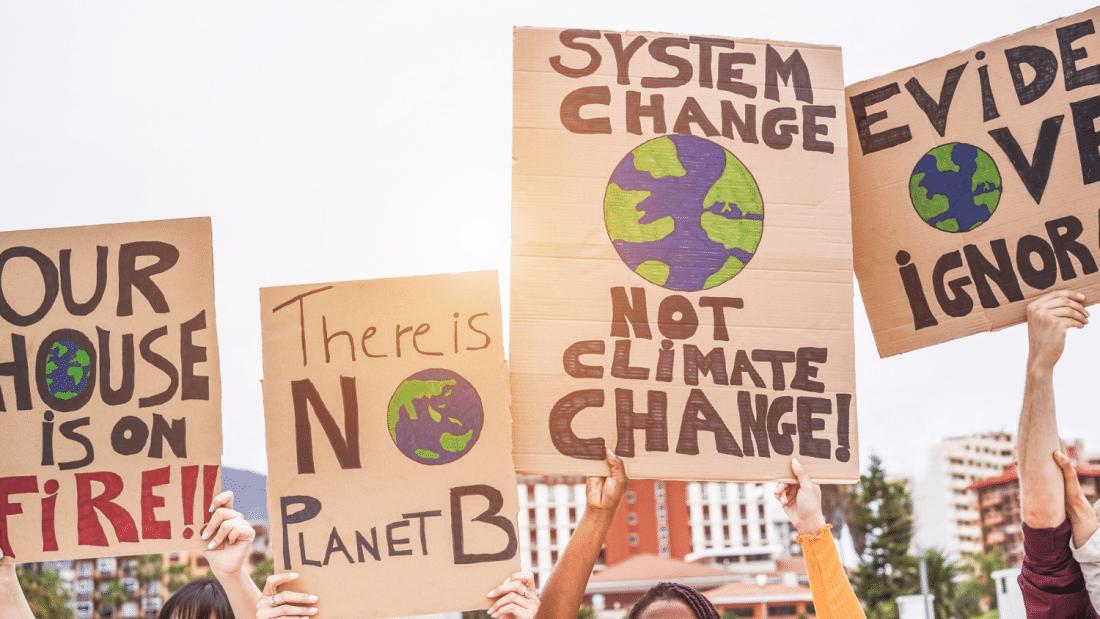is the zero waste movement dead