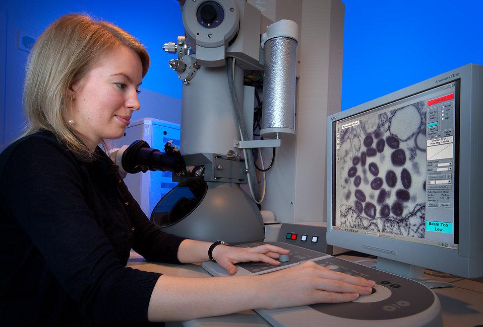 Elektron Mikroskopları Çalışma Prensibi