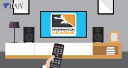 Sport1 & Blizzard Teams Up To Stream OWL In Europe