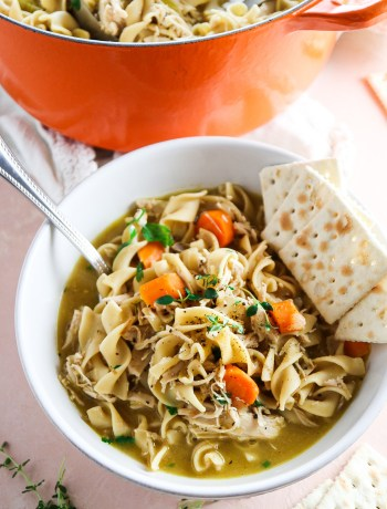 Quick and Easy 30 Minute Chicken Noodle Soup