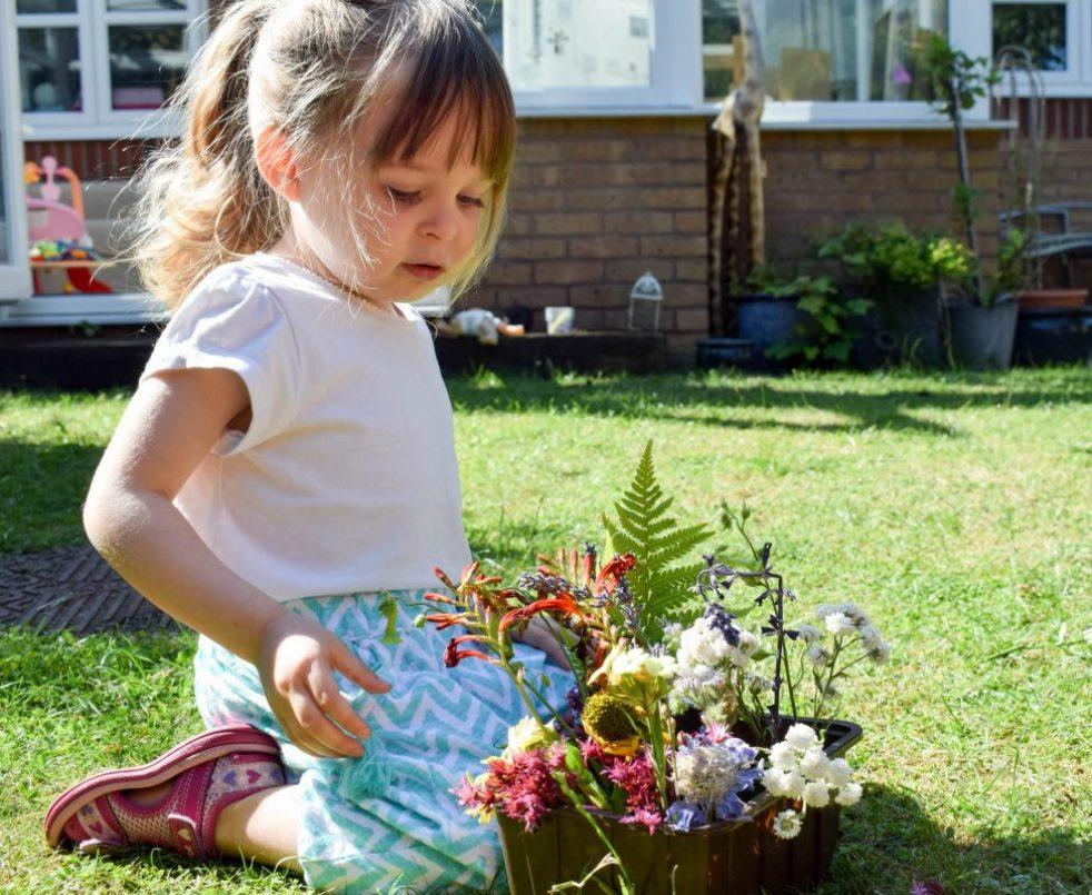 Back Garden Adventures -