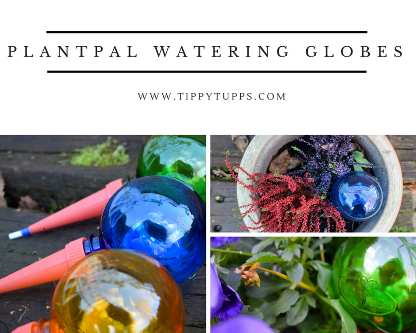Getting Green Fingers with Plantpal – review & giveaway