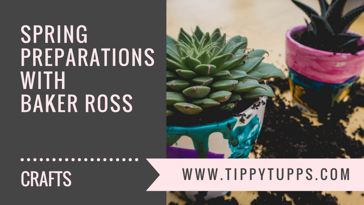 Spring Preparations with Baker Ross - blog header image