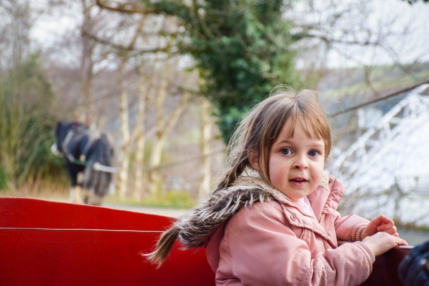 Llangollen Wharf – taking it easy on a horse drawn boat ride
