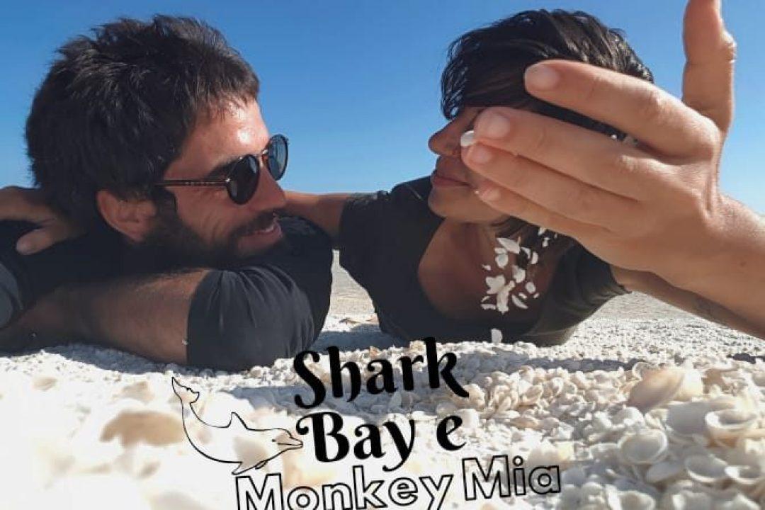 Copertina articolo Shark Bay e Monkey Mia