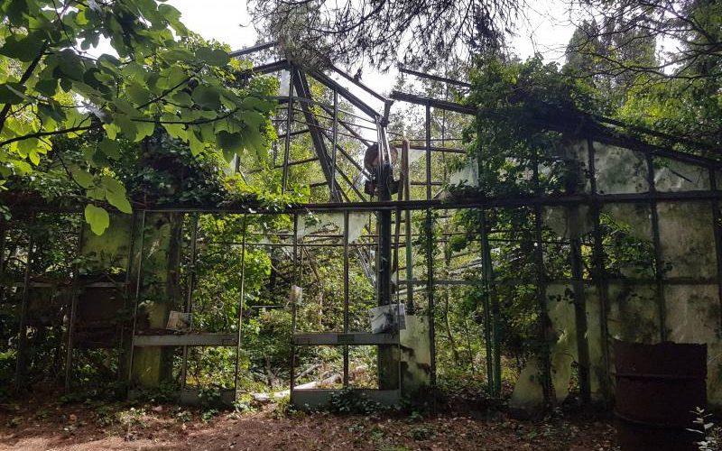 I resti della serra dove si coltivavano le stelle di Natale dietro il Padiglione Maragliano dell'Ex Manicomio di Volterra