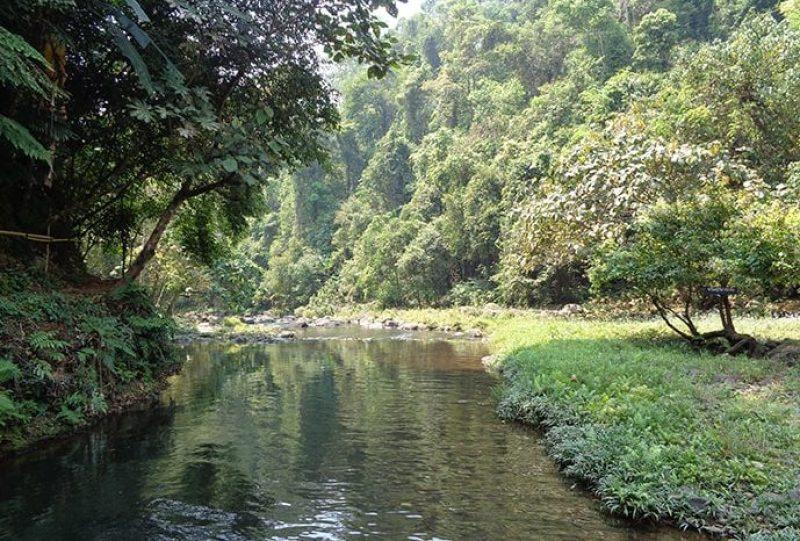 Fiume nella natura nell'altopiano del Bolaven nel Laos