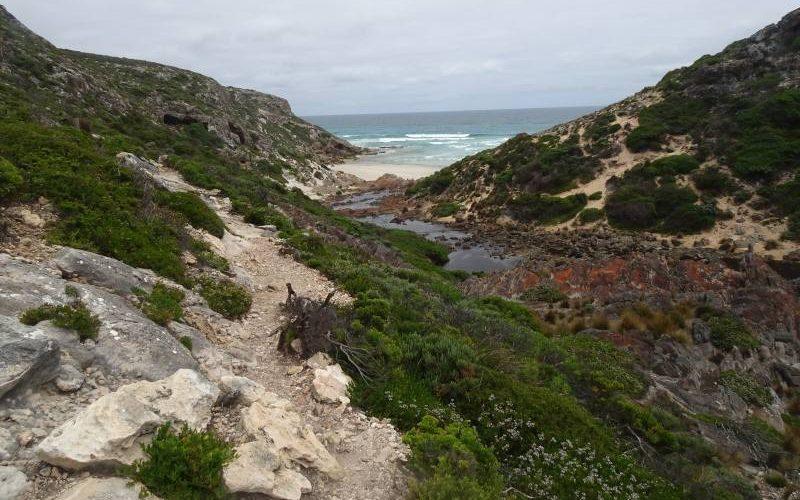 Fine del percorso di trekking Snake Lagoon Hike a Kangaroo Island