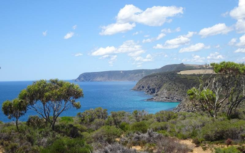 Punto panoramico della scogliera di Kangaroo Island sulla strada per andare a Kingscote