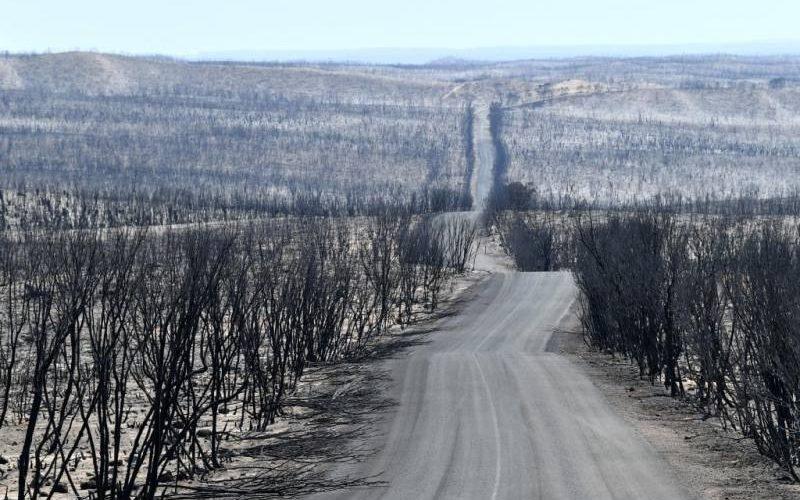 Strada famosa del Flinders Chase distrutta dagli incendi 2019-2020