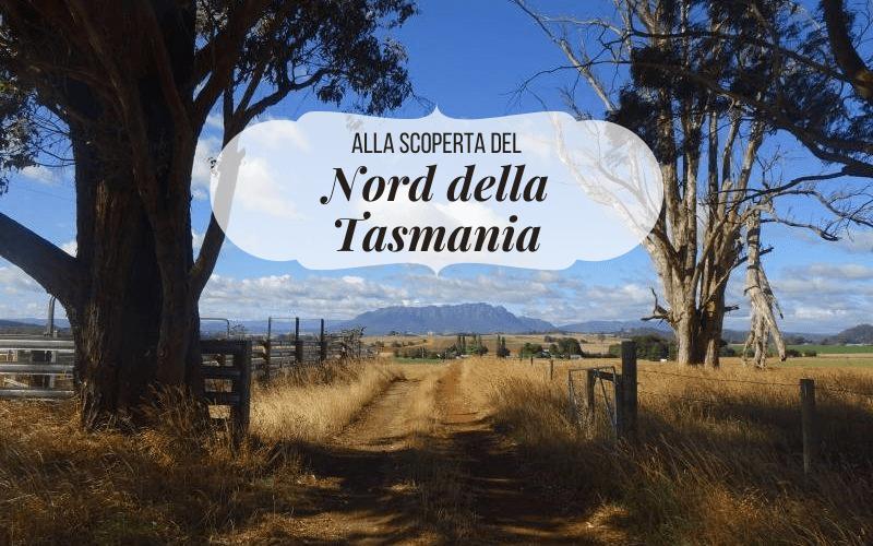 Alla scoperta del NORD DELLA TASMANIA: i luoghi imperdibili