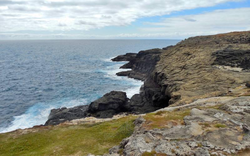 Punto panoramico Blowholes con la scogliera frastagliata dalla forza dell'oceano