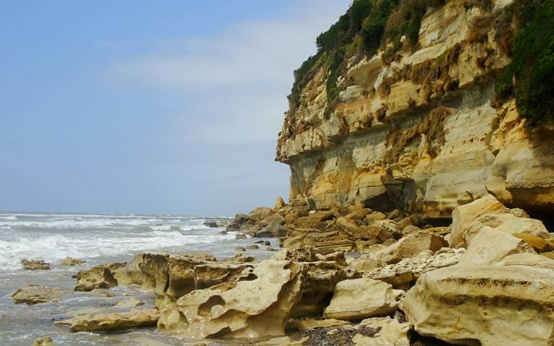"""La scogliera con strati fossili """"Fossil Bluff"""" durante il viaggio verso Stanley"""