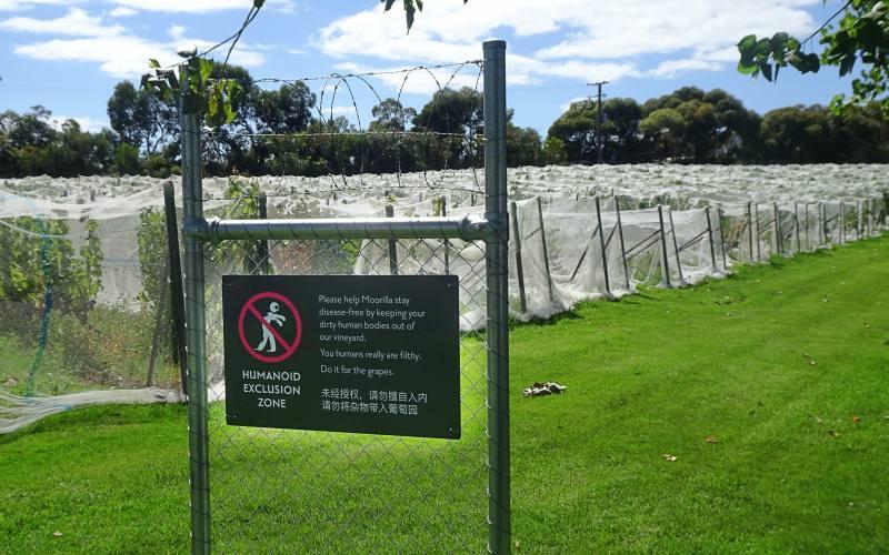 Cartello divieto d'ingresso agli zombie all'entrata del MONA, il museo più bello della Tasmania