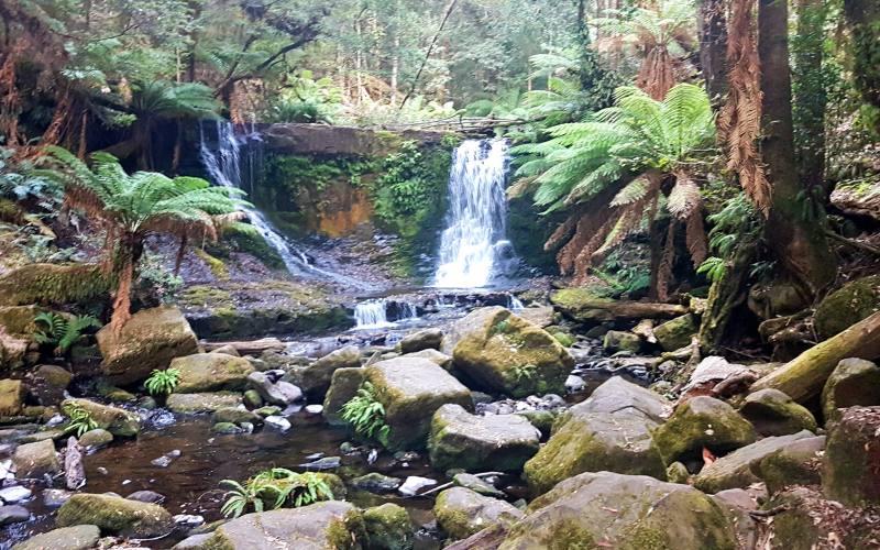 "Cascata ""Horseshoe Fall"" nel Parco Nazionale ""Mount Field National Park"" in Tasmania"