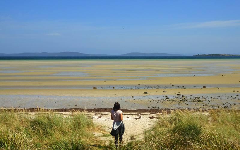 Punto panoramico spiaggia Dunalley Beach con l'oceano in bassa marea in Tasmania