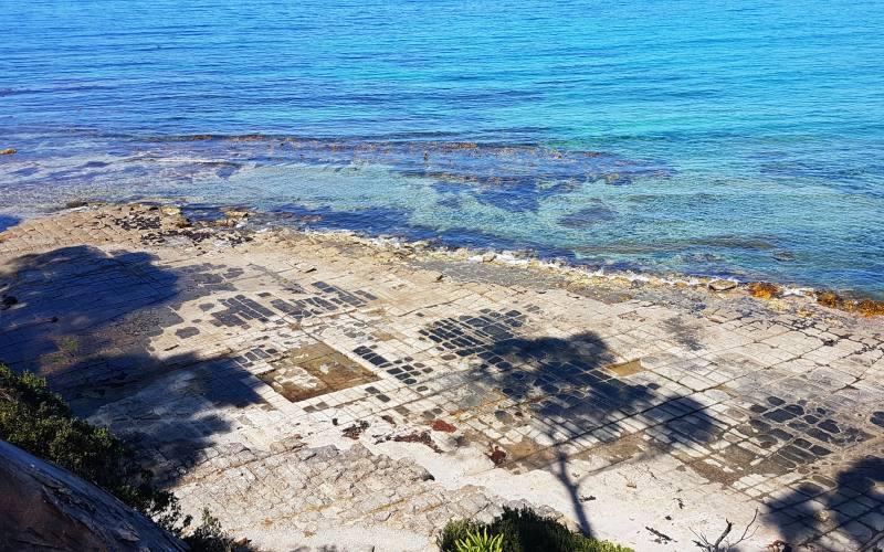 """Il pavimento tassellato """"Tessellated Pavement"""" della Tasman Peninsula visto dall'alto"""