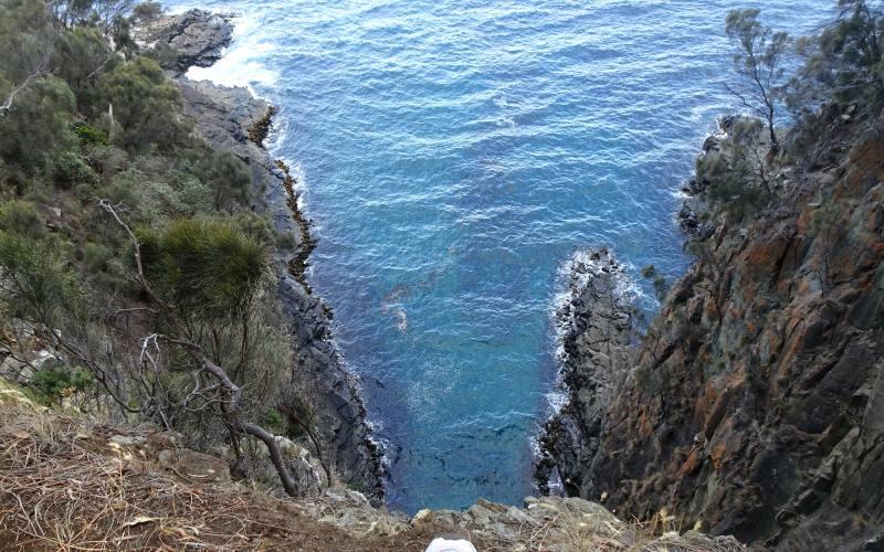 """Oceano visto da una scogliera del trekking """"Fluted Cape"""" su Bruny Island in Tasmania"""