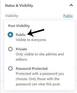 visibility-of-wordpress-post-or-page-password-protection