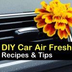 11 All Natural Homemade Car Air Fresheners