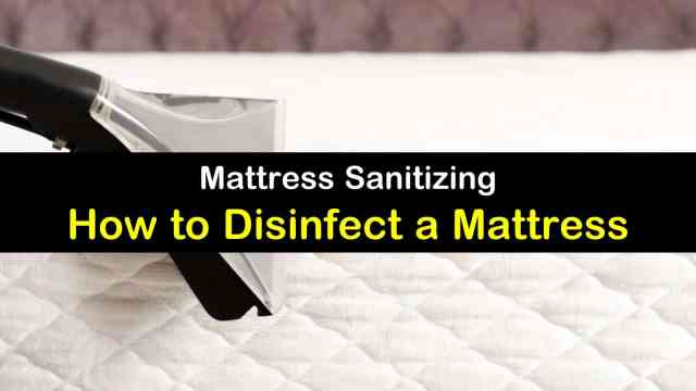 29 Clever Ways to Disinfect a Mattress